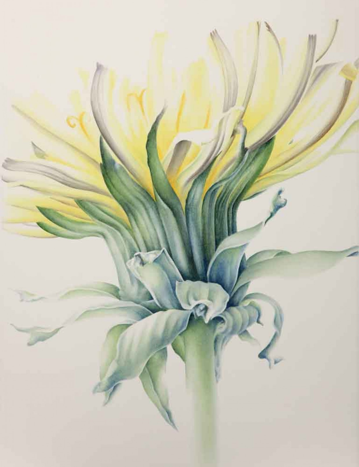 ``Dandelion`` Water color on paper, Minako Watanabe