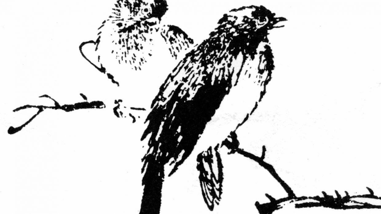 『芥子園画伝(かいしえんがでん)』に学ぶ水墨画